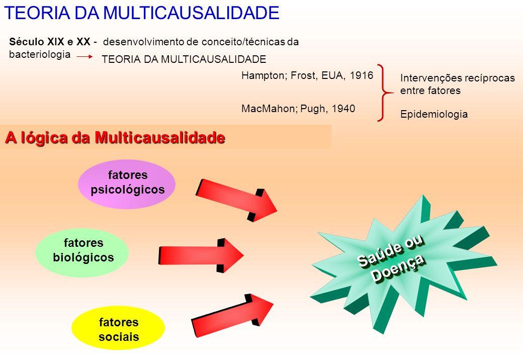 TEORIA DA MULTICAUSALIDADE