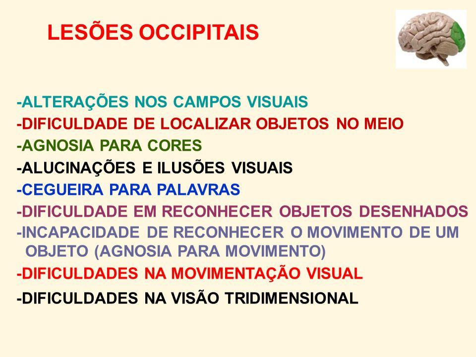 LESÕES OCCIPITAIS -ALTERAÇÕES NOS CAMPOS VISUAIS