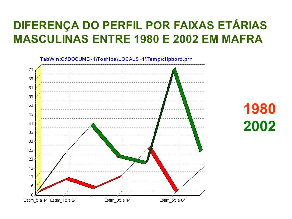 1980 2002 DIFERENÇA DO PERFIL POR FAIXAS ETÁRIAS