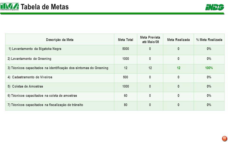 Tabela de Metas Descrição da Meta Meta Total Meta Prevista até Maio/08