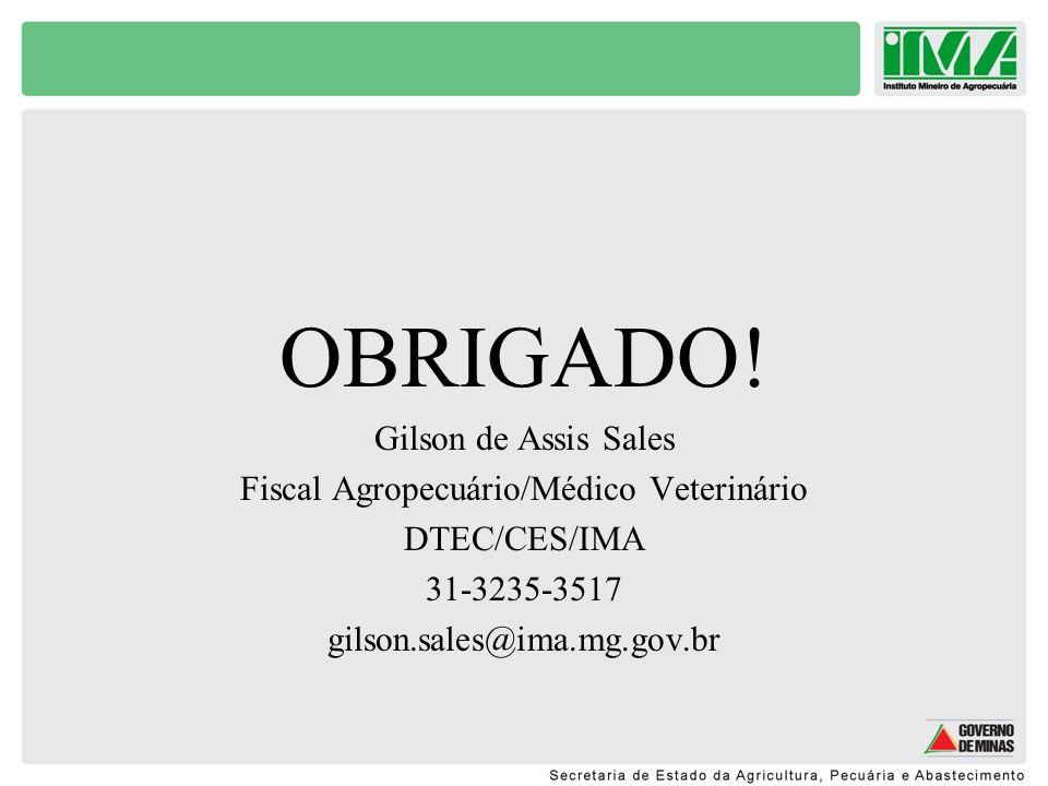 Fiscal Agropecuário/Médico Veterinário