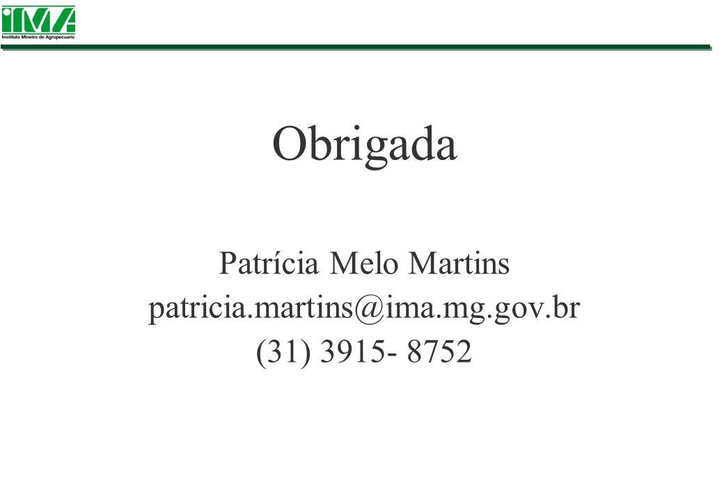 Obrigada Patrícia Melo Martins patricia.martins@ima.mg.gov.br