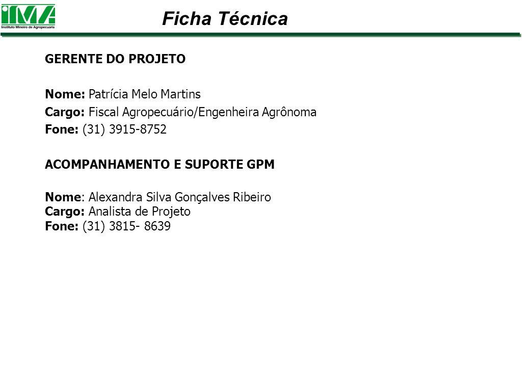 Ficha Técnica GERENTE DO PROJETO Nome: Patrícia Melo Martins
