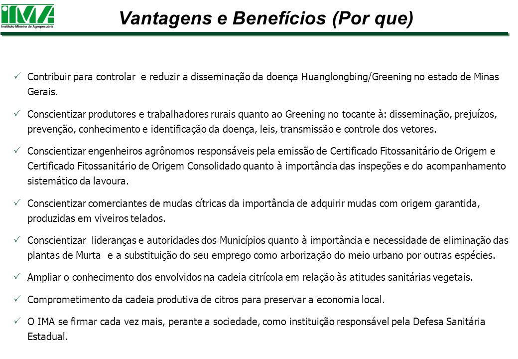 Vantagens e Benefícios (Por que)