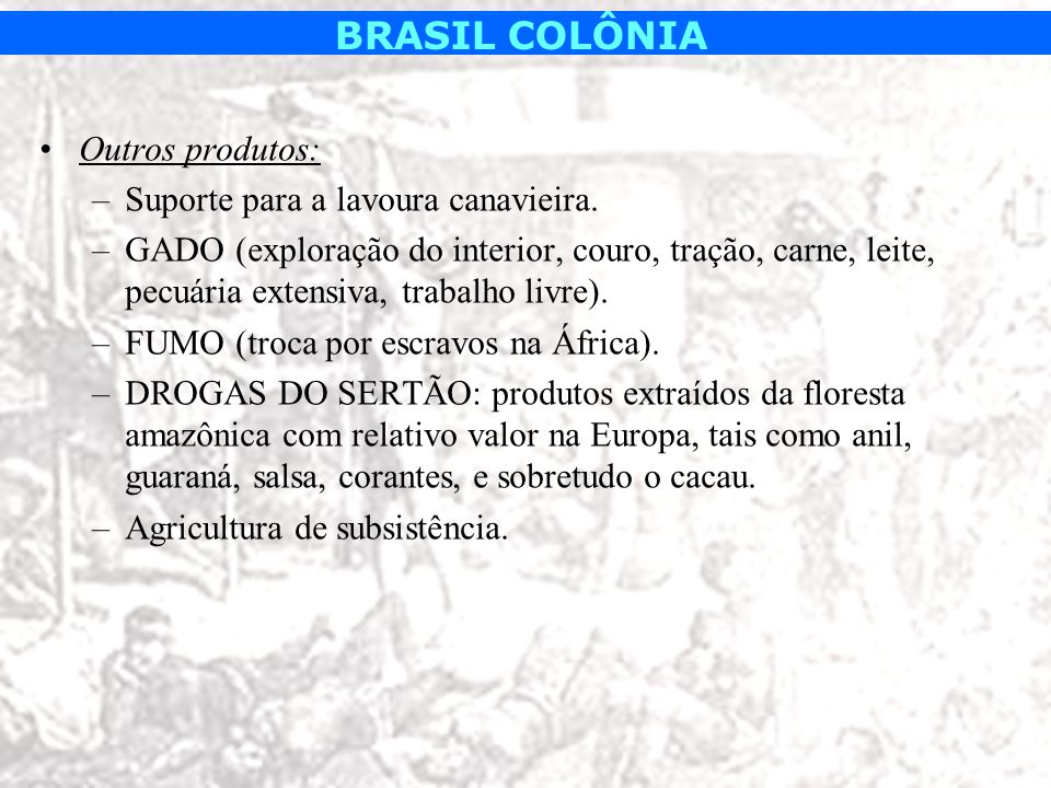 Outros produtos: Suporte para a lavoura canavieira. GADO (exploração do interior, couro, tração, carne, leite, pecuária extensiva, trabalho livre).