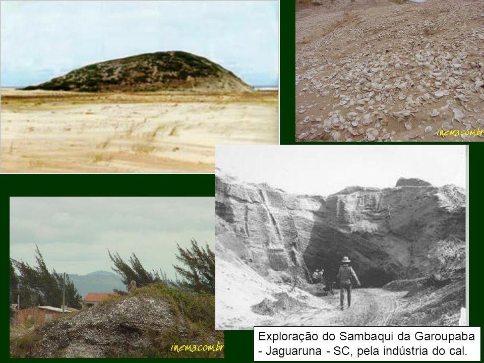 Exploração do Sambaqui da Garoupaba - Jaguaruna - SC, pela indústria do cal.