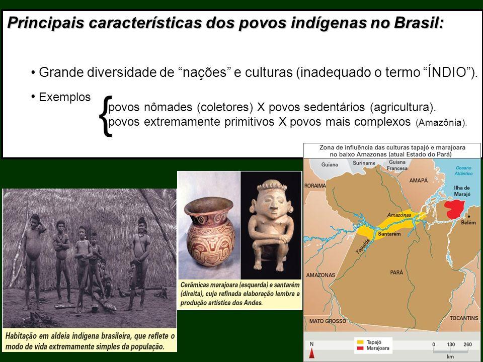{ Principais características dos povos indígenas no Brasil:
