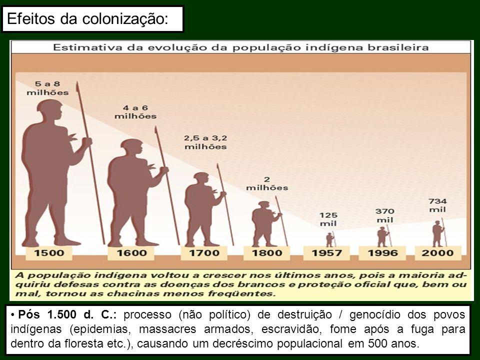 Efeitos da colonização: