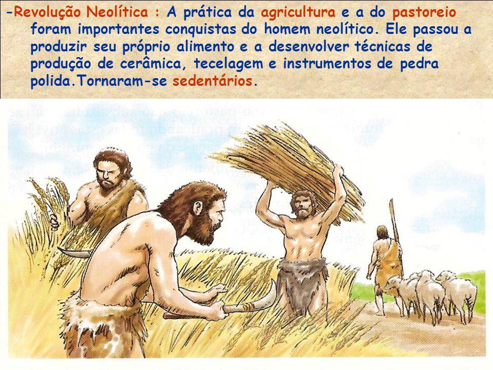 -Revolução Neolítica : A prática da agricultura e a do pastoreio foram importantes conquistas do homem neolítico.