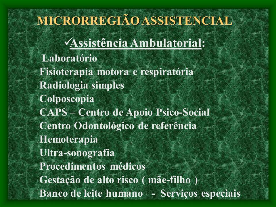 Assistência Ambulatorial: