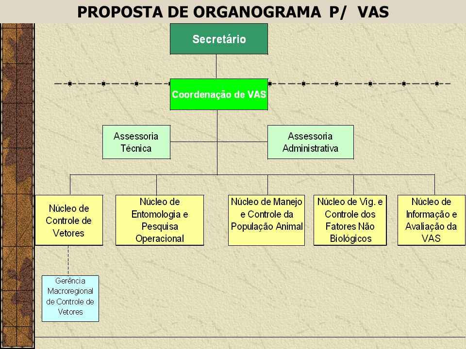 PROPOSTA DE ORGANOGRAMA P/ VAS