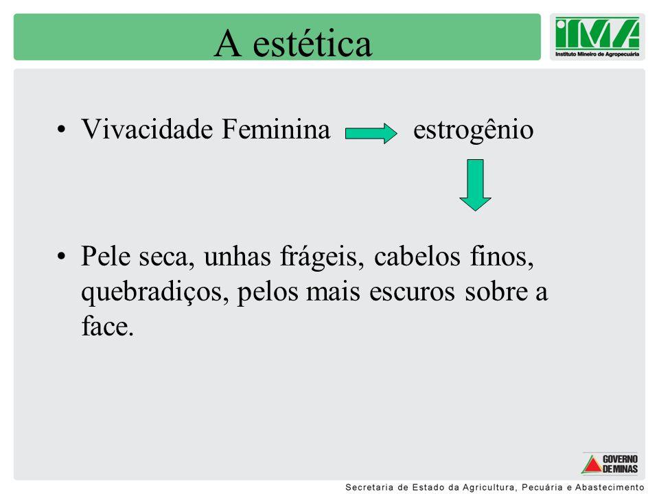 A estética Vivacidade Feminina estrogênio