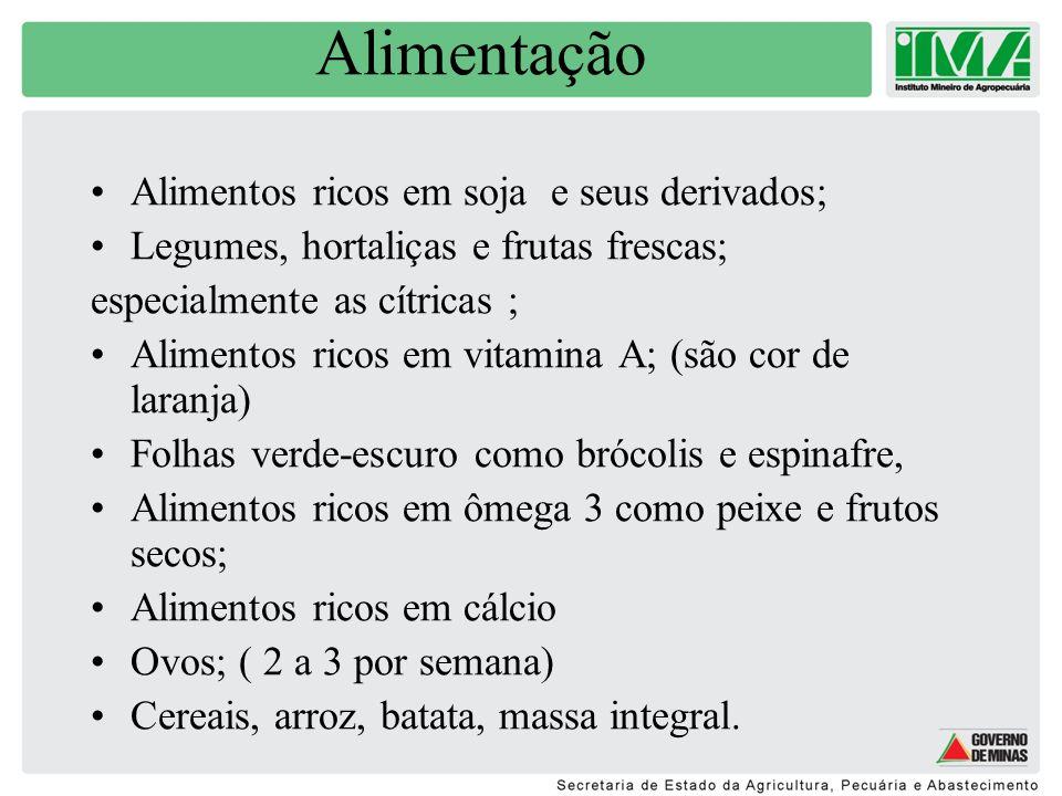 Alimentação Alimentos ricos em soja e seus derivados;
