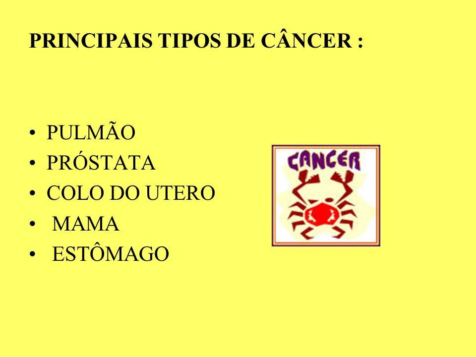 PRINCIPAIS TIPOS DE CÂNCER :