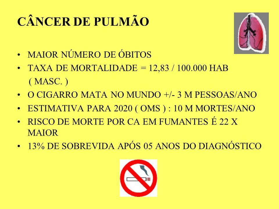 CÂNCER DE PULMÃO MAIOR NÚMERO DE ÓBITOS