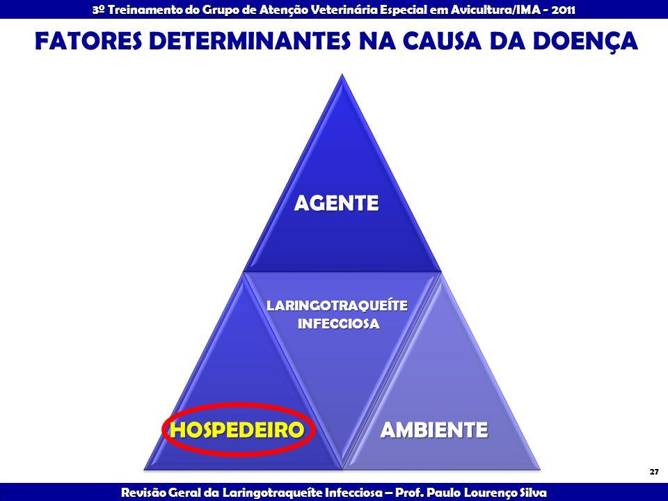 FATORES DETERMINANTES NA CAUSA DA DOENÇA