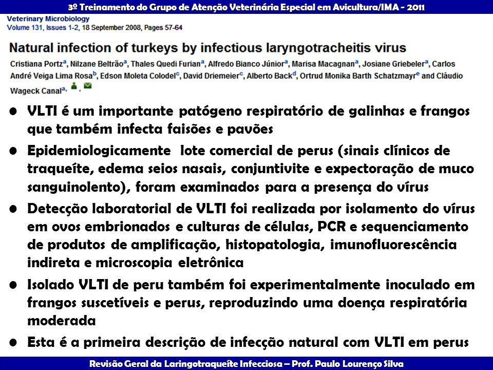 VLTI é um importante patógeno respiratório de galinhas e frangos que também infecta faisões e pavões