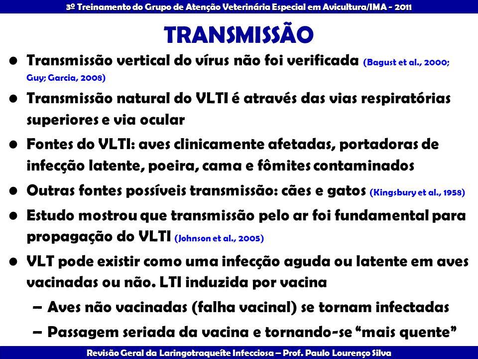 TRANSMISSÃO Transmissão vertical do vírus não foi verificada (Bagust et al., 2000; Guy; Garcia, 2008)