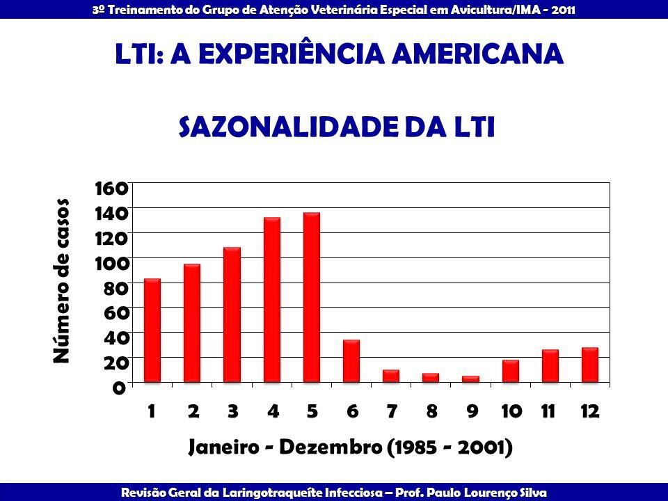 LTI: A EXPERIÊNCIA AMERICANA