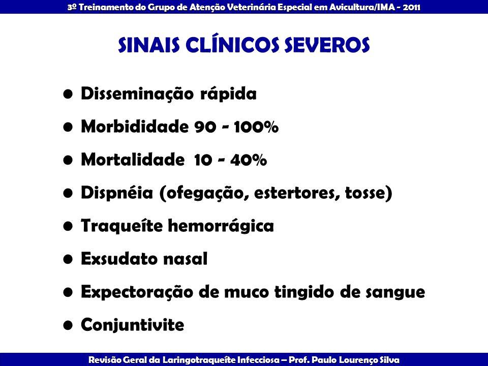 SINAIS CLÍNICOS SEVEROS