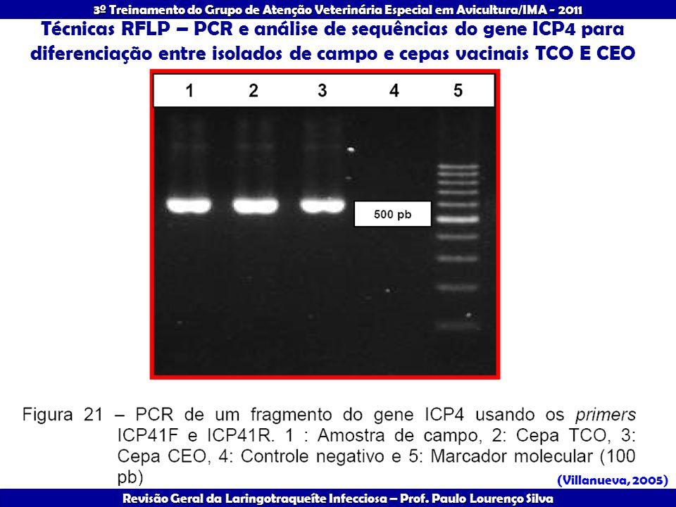 Técnicas RFLP – PCR e análise de sequências do gene ICP4 para diferenciação entre isolados de campo e cepas vacinais TCO E CEO