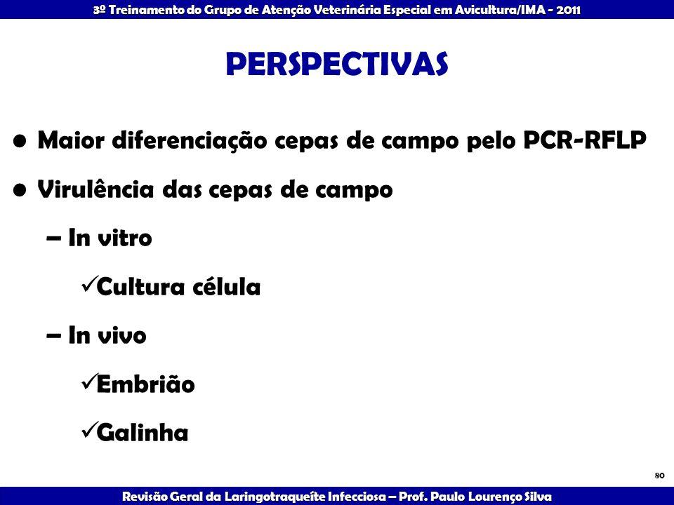 PERSPECTIVAS Maior diferenciação cepas de campo pelo PCR-RFLP