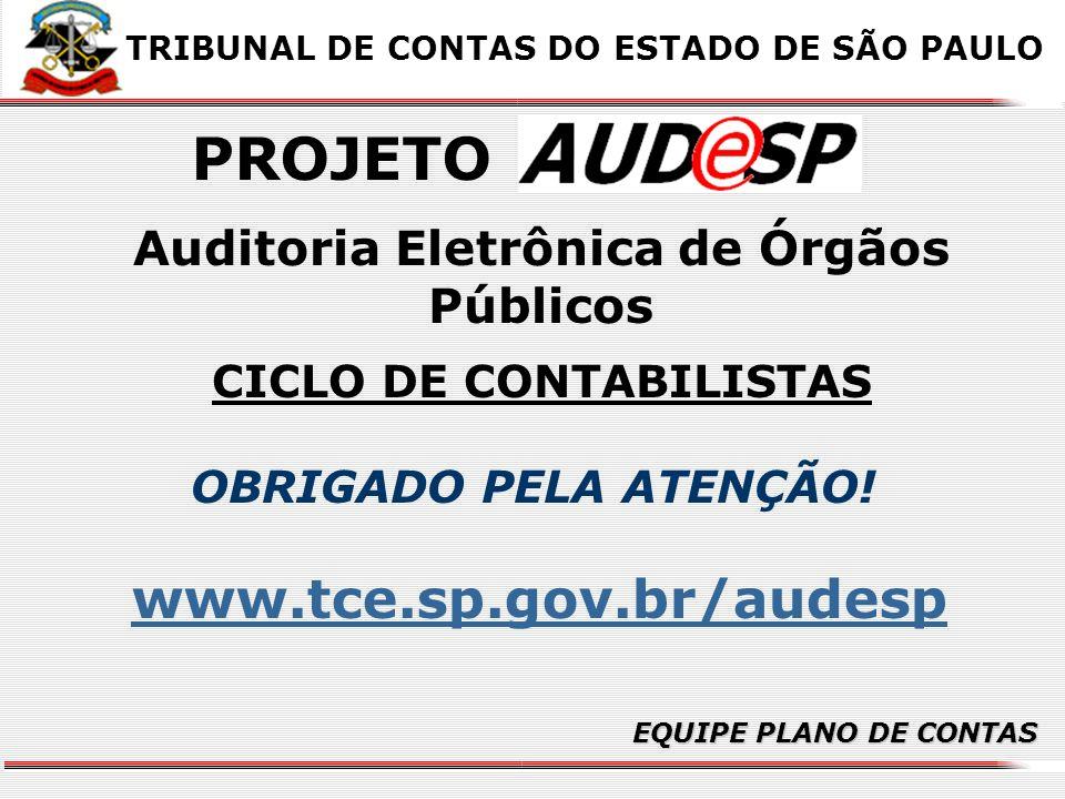 Auditoria Eletrônica de Órgãos Públicos CICLO DE CONTABILISTAS