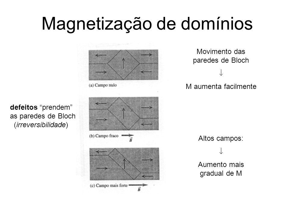 Magnetização de domínios