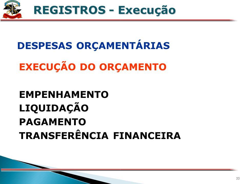 REGISTROS - Execução DESPESAS ORÇAMENTÁRIAS EXECUÇÃO DO ORÇAMENTO