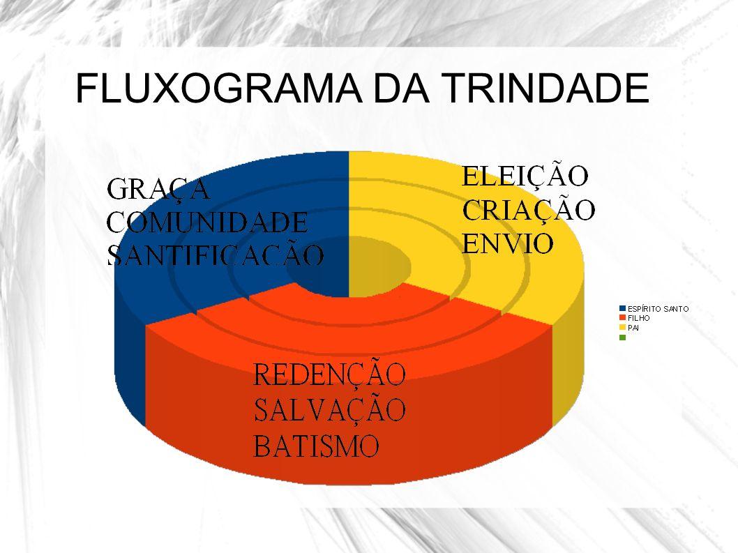 FLUXOGRAMA DA TRINDADE