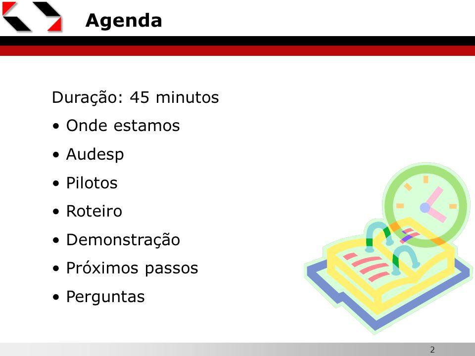 Agenda Duração: 45 minutos Onde estamos Audesp Pilotos Roteiro