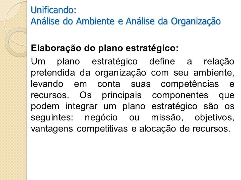 Análise do Ambiente e Análise da Organização