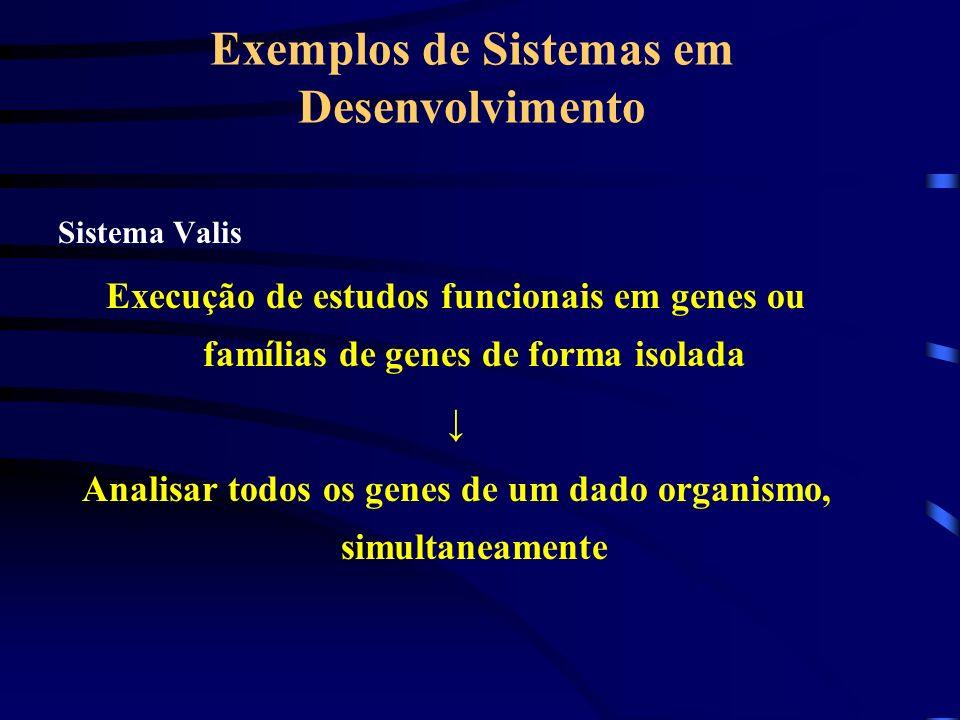Exemplos de Sistemas em Desenvolvimento