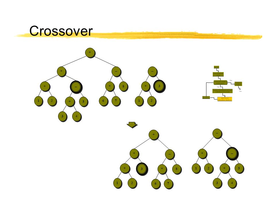 Crossover + *   +  * 8 * 3 1 2 + 5 6 7 1 2 3 4 +  *  *  + 3 * 8