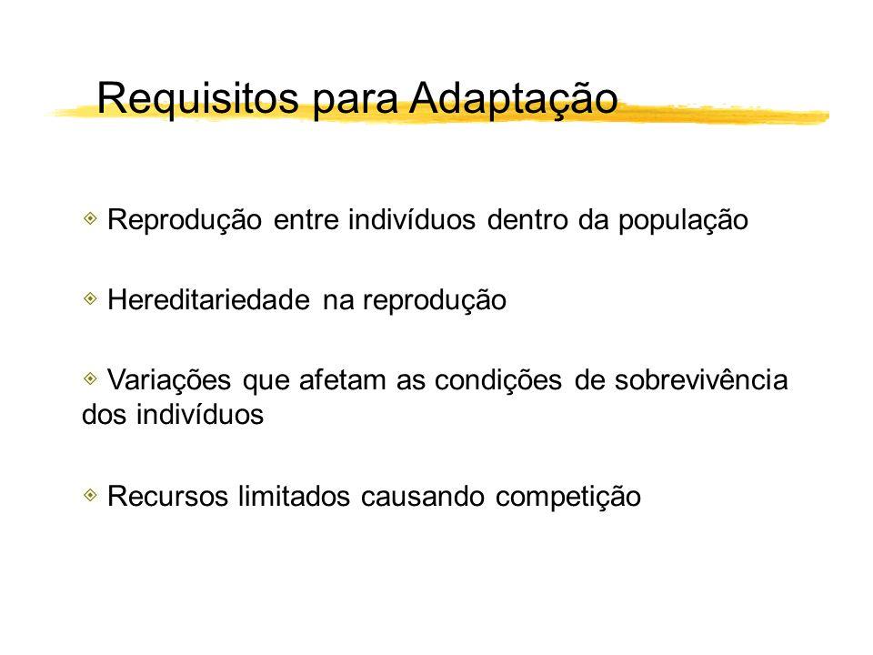 Requisitos para Adaptação