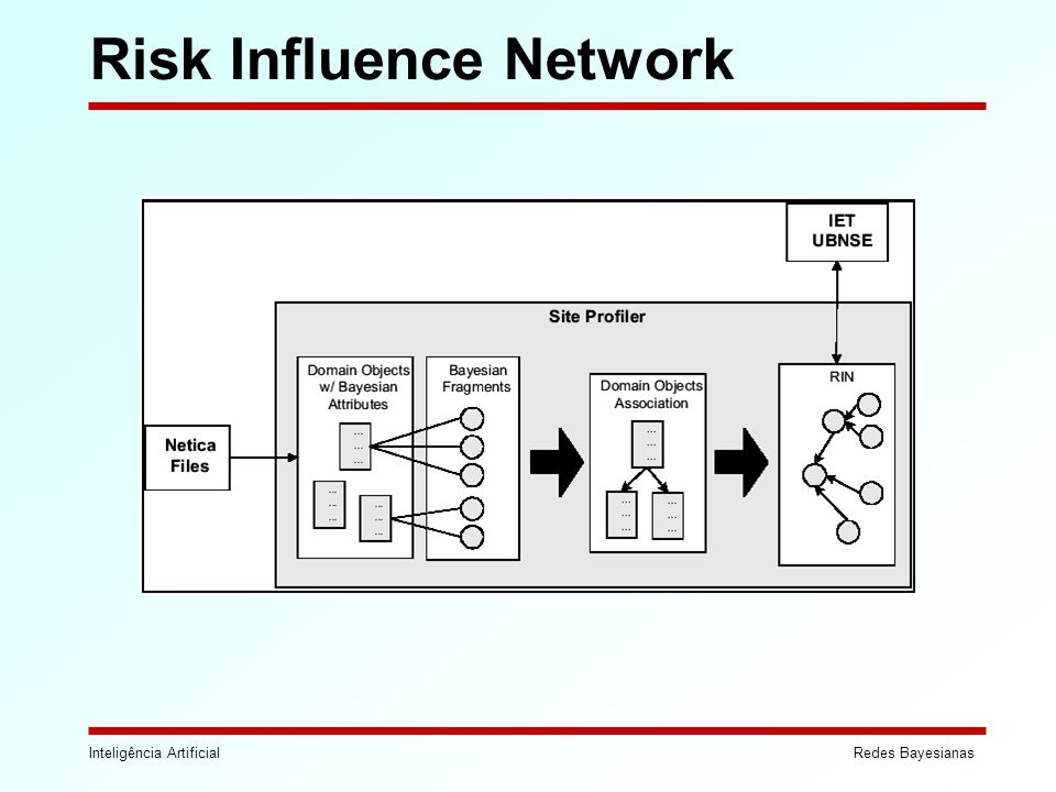 Risk Influence Network
