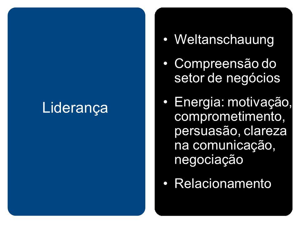 Liderança Weltanschauung Compreensão do setor de negócios
