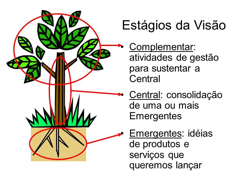 Estágios da Visão Complementar: atividades de gestão para sustentar a Central. Central: consolidação de uma ou mais Emergentes.