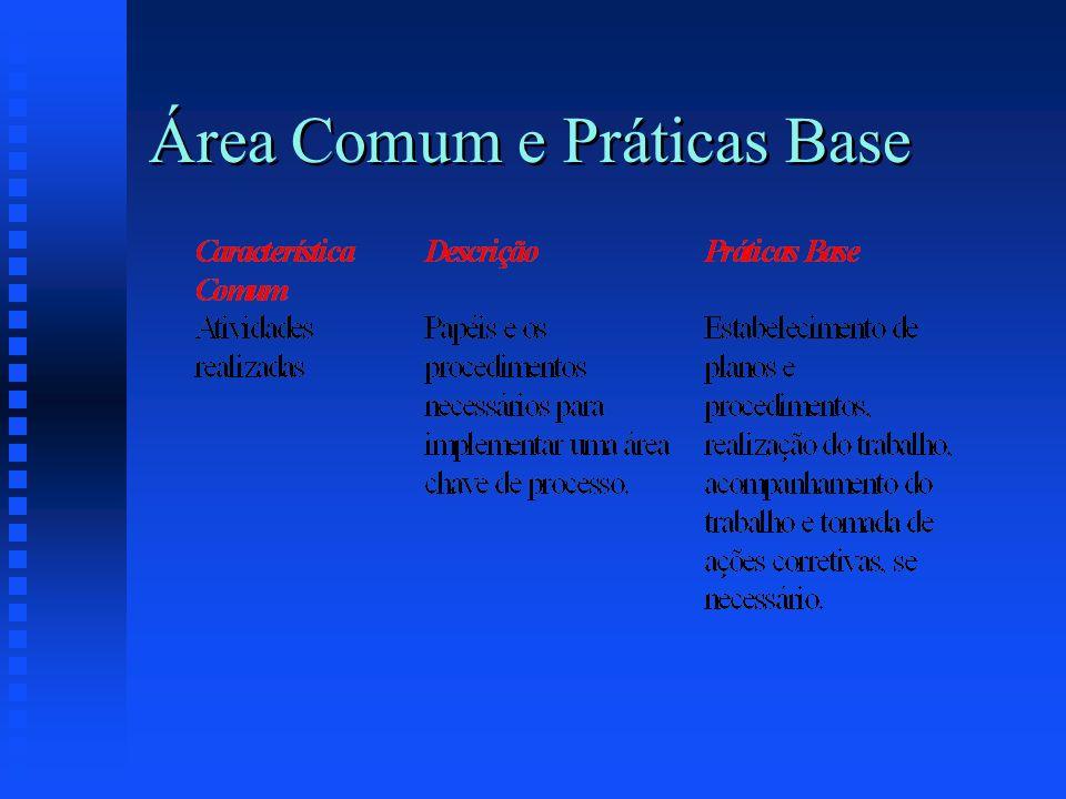 Área Comum e Práticas Base