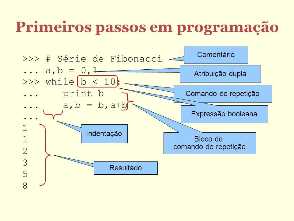 Primeiros passos em programação