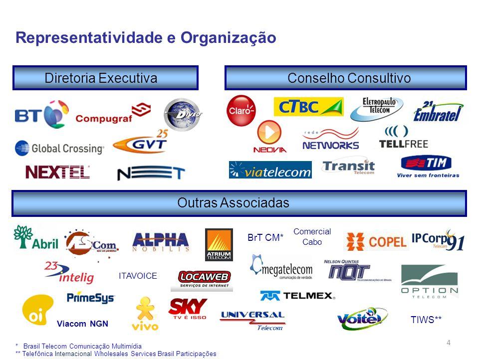 Representatividade e Organização