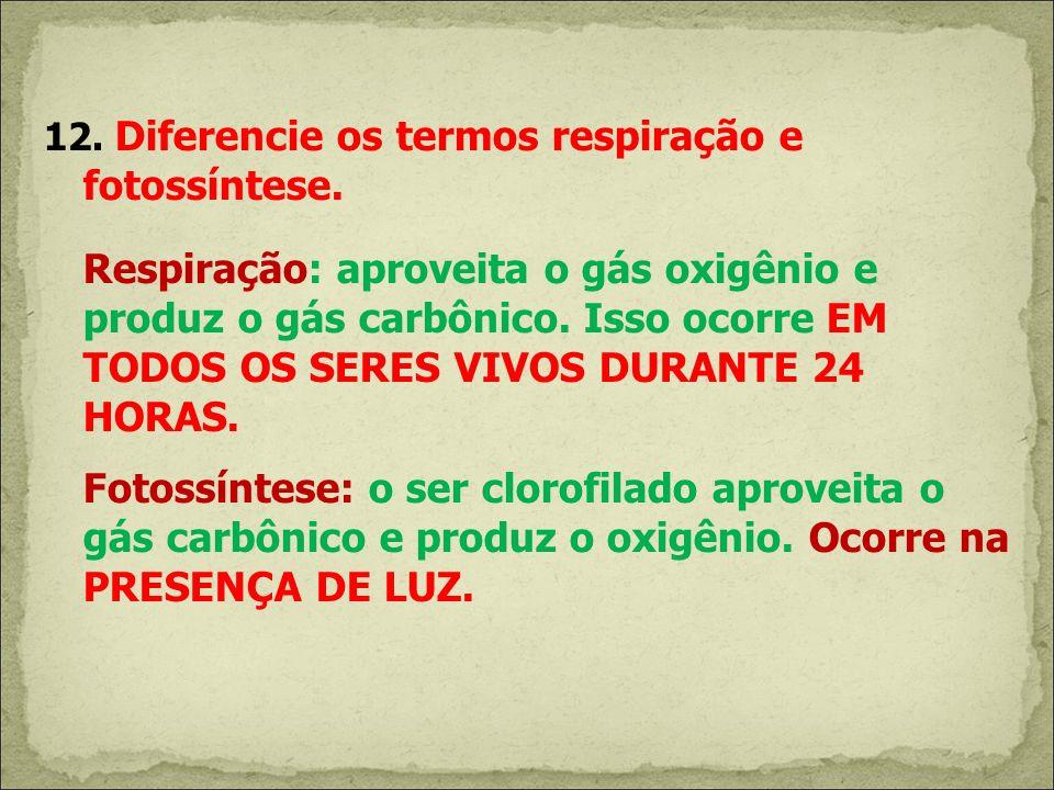 12. Diferencie os termos respiração e fotossíntese.