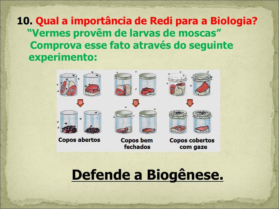 10. Qual a importância de Redi para a Biologia
