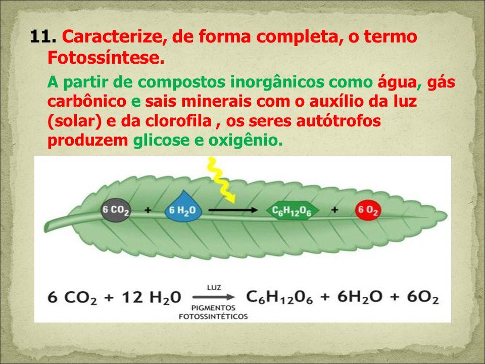 11. Caracterize, de forma completa, o termo Fotossíntese.