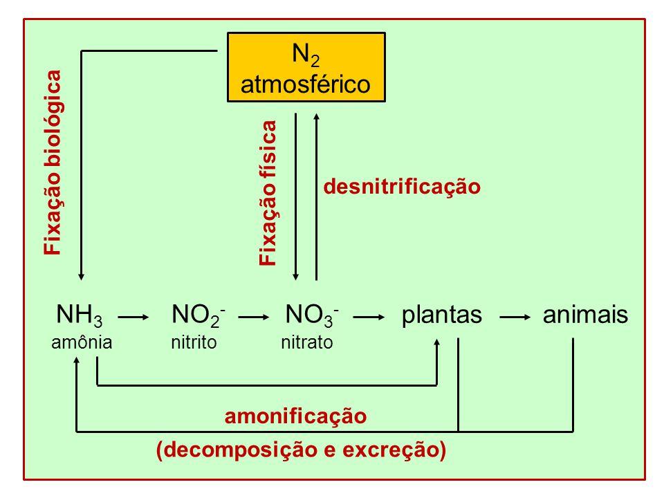 identificación de nitritos y nitratos 10 propÓsito estandarizar el procedimiento para la identificación de arsénico, bismuto, mercurio, antimonio, nitratos y nitritos 20 alcance.