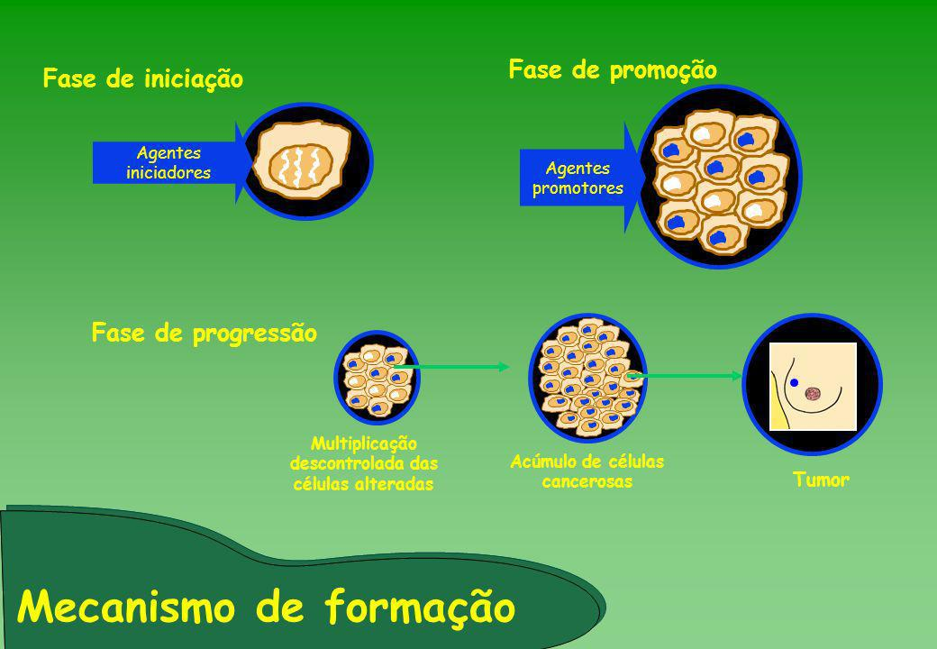 Mecanismo de formação Fase de promoção Fase de iniciação