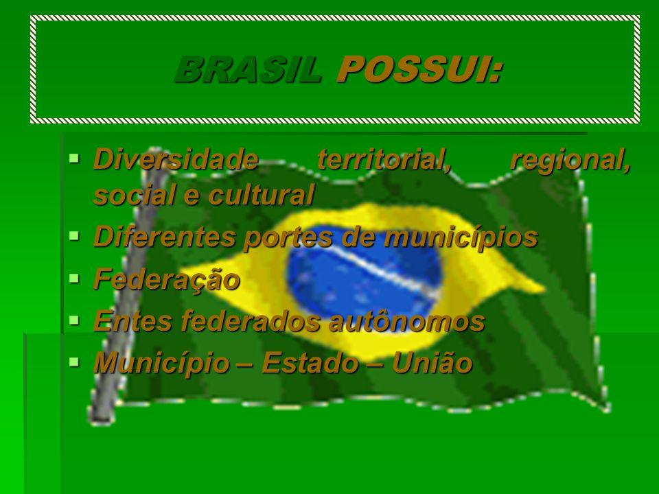 BRASIL POSSUI: Diversidade territorial, regional, social e cultural