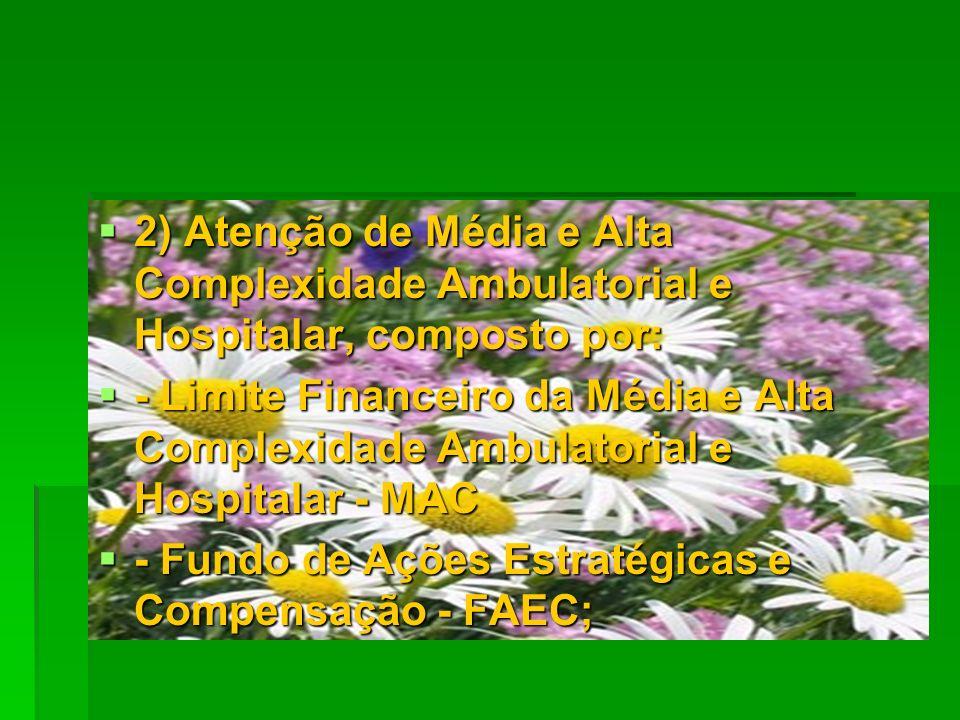 2) Atenção de Média e Alta Complexidade Ambulatorial e Hospitalar, composto por: