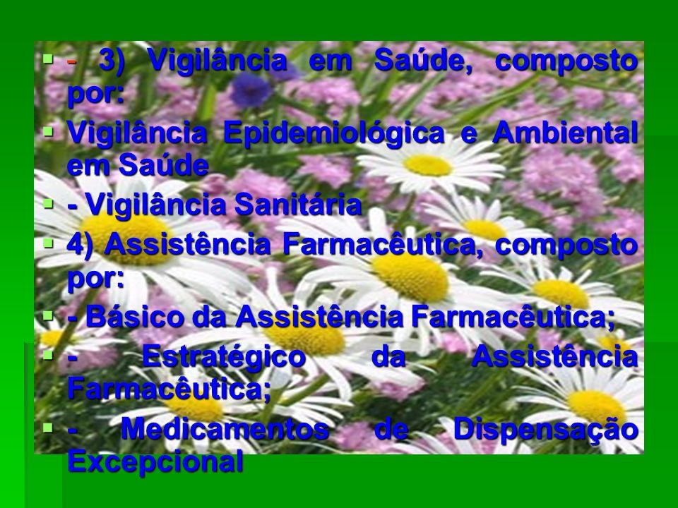 - 3) Vigilância em Saúde, composto por: