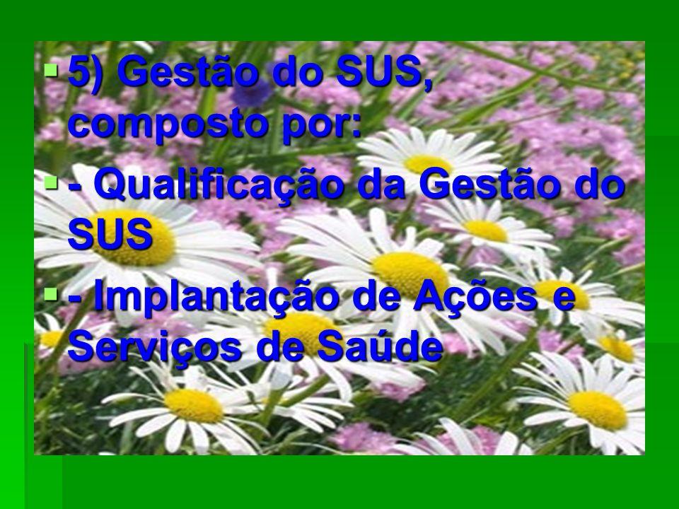5) Gestão do SUS, composto por: